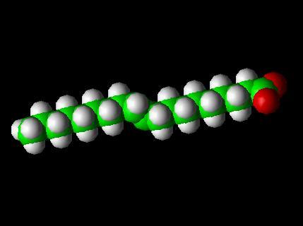 Saturated Fat Molecule. fatty acid molecule that